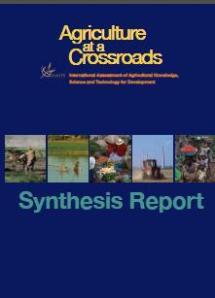 iaastd report 08-09