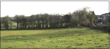 greenfield site 4