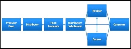 food supply chain diagram