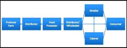 food supply chain diagram